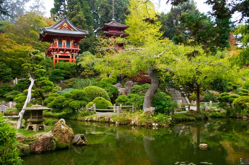 japanese-gardens-san-francisco-golden-gate-park