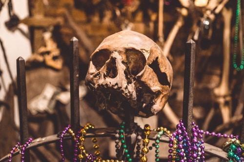 skull-mardi-gras-beads-new-orleans