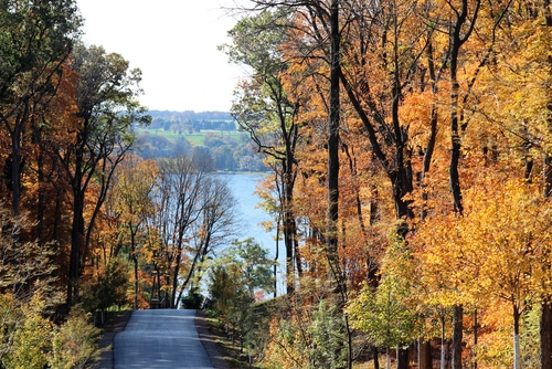 foliage-road-lake-geneva-wisconsin