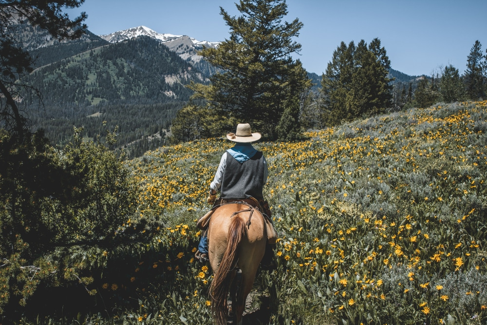 horseback-riding-in-wyoming