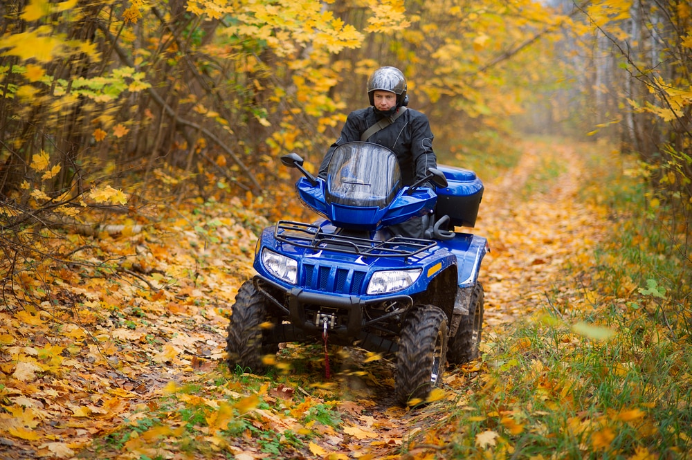 atv-surrounded-by-yellow-leaves