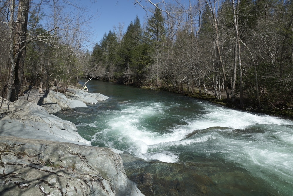river-flowing-through-smokies