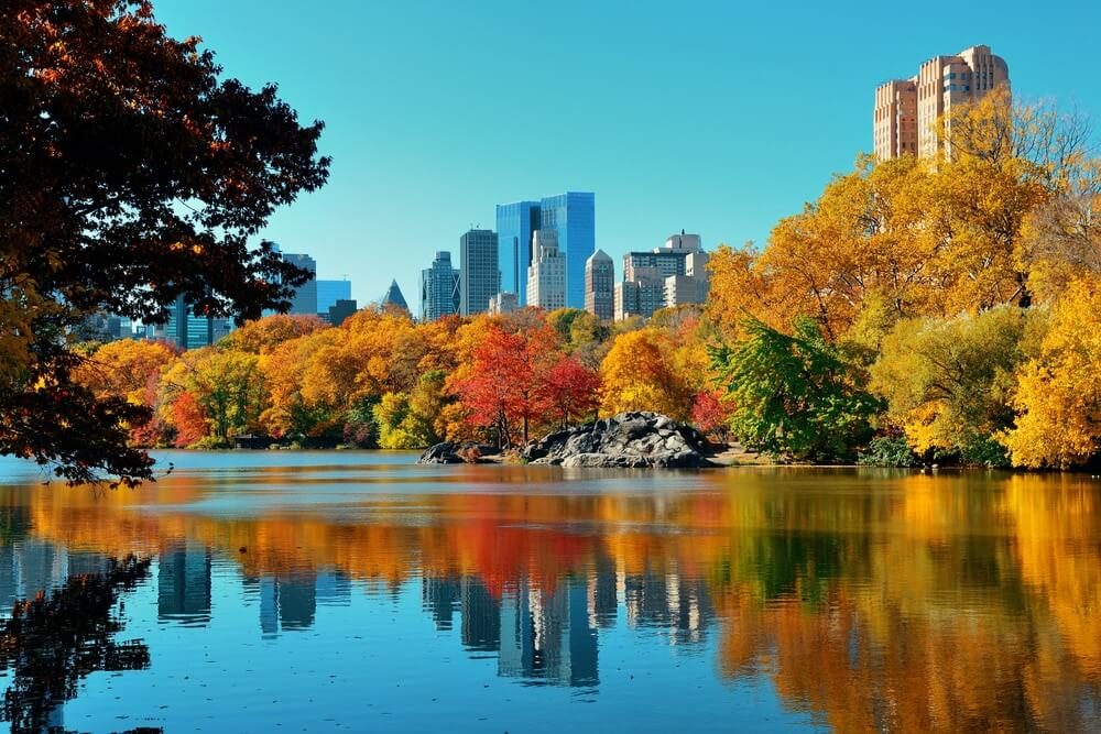 central-park-in-fall