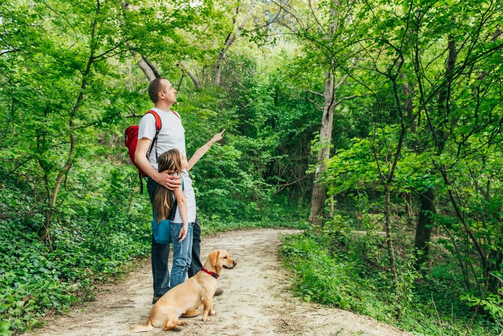 family-walking-through-trail-with-dog