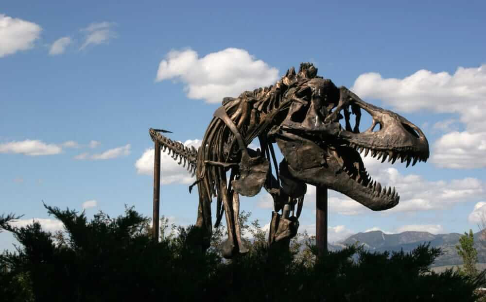 dinosaur-statue-at-museum-of-rockies