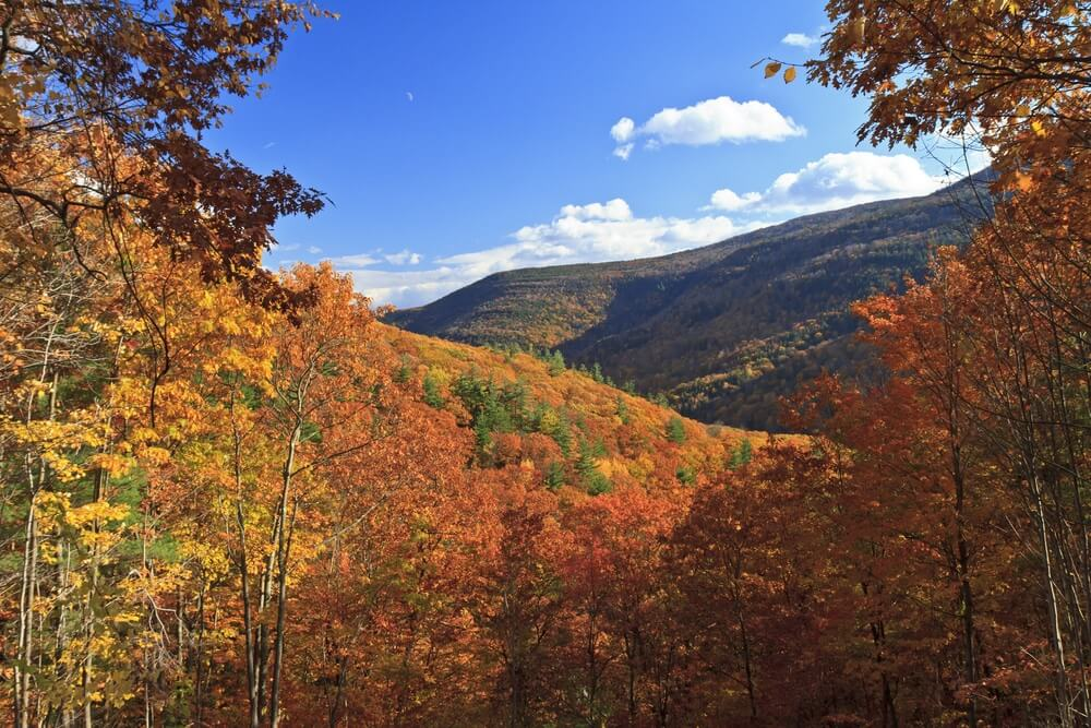 catskill-mountain-range-in-fall
