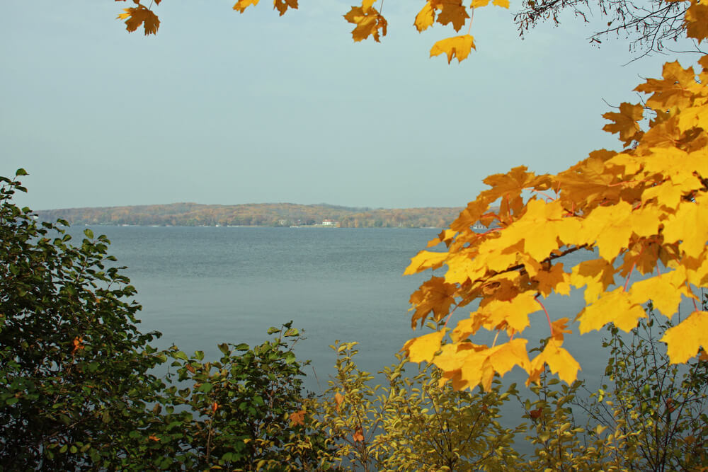yellow-leaves-at-lake-geneva