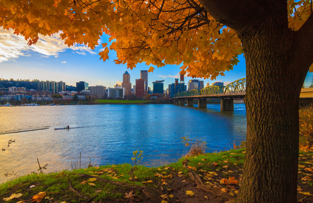 portland-with-autumn-leaves