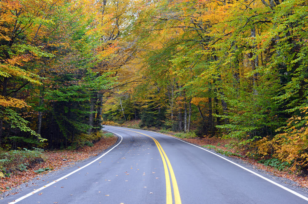 upstate-new-york-autumn-road