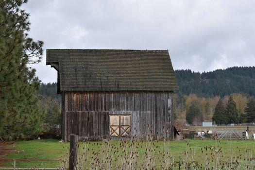 barn-in-brownsville