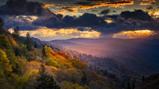 Stay In A Smoky Mountain Cabin Explore Tennessee Nature